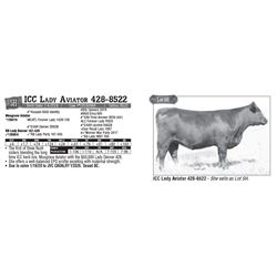 Lot - 5H - ICC Lady Aviator 428-8522