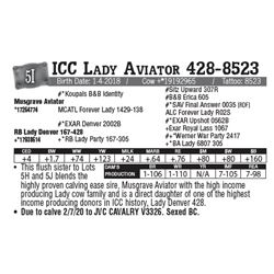 Lot - 5I - ICC Lady Aviator 428-8523