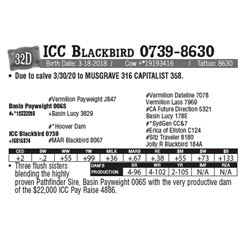 Lot - 32D - ICC Blackbird 0739-8630