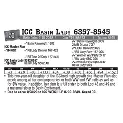 Lot - 50 - ICC Basin Lady 6357-8545