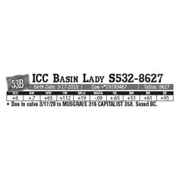 Lot - 53B - ICC Basin Lady S532-8627