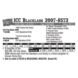 Lot - 60 - ICC Blacklass 3007-8573