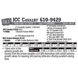 Lot - 196A - ICC Cavalry 610-9429