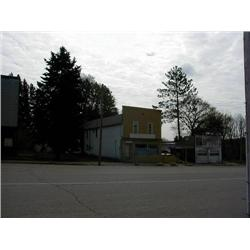 Wexford County, Michigan, Tax Sale, Real Estate, South Davis Avenue; Harrietta