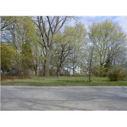 Wexford County, Michigan, Tax Sale, Real Estate, Henry Street, Mesick