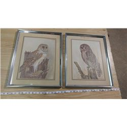 LOT OF FOUR PICTURES (2 OWL PICTURES, WOODPECKER AND SHEEP)