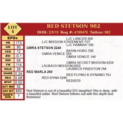 RED STETSON 982