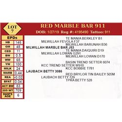 RED MARBLE BAR 911