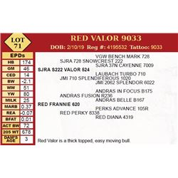 RED VALOR 9033