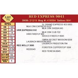 RED EXPRESS 9041