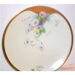 Hand Painted Morning Glory Decorated Plate #863408