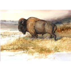 Tom Sander, Orig Watercolor Bison