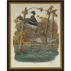 LITHOGRAPH RICHARD SLOAN MALLARD DUCK SIGNED