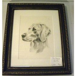 Drawing of Retriever Dog #2380441