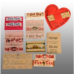 Glass Fan Tan Gum Display.