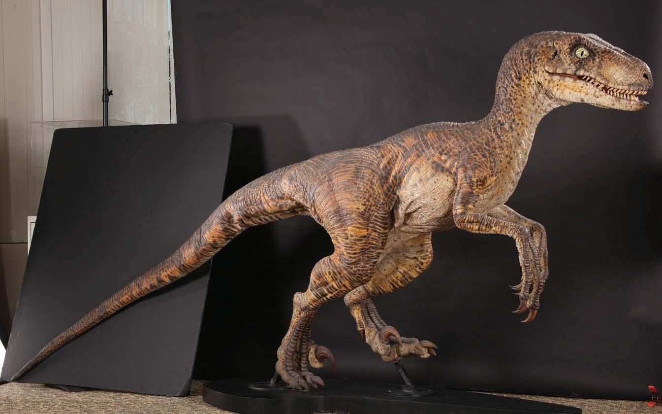 Velociraptor | JP-Wiki | FANDOM powered by Wikia