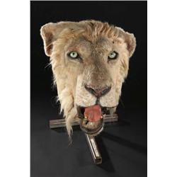 "Hero animatronic full-scale ""Darkness"" lion head from The Ghost and the Darkness"