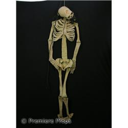 Halloween II Hanging Skeleton Movie Props