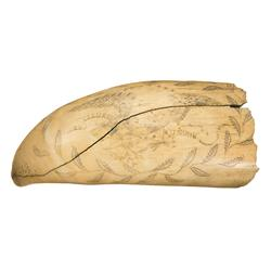 Large Scrimshawed Whale Tooth with Patriotic Motif