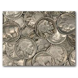 Lot of 100 Buffalo Nickels-