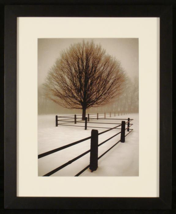 Tree and Fence Winter Scene Nature Photograph Framed