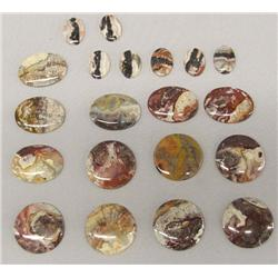 21 Polished Picture Rock Cabochons