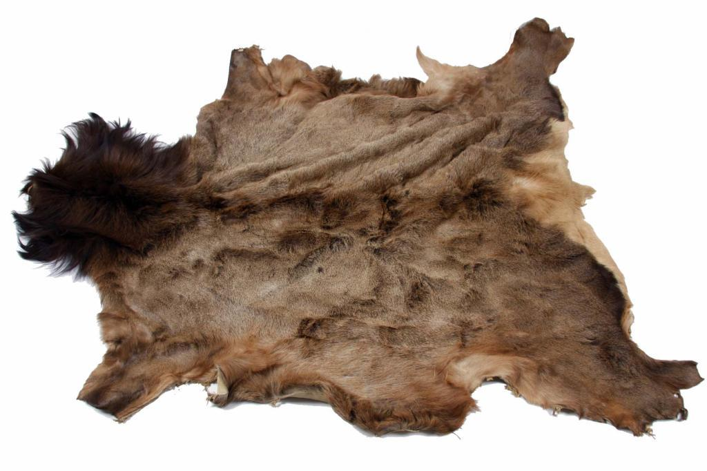 Elk Skin Rug In Good Condition In Good Condition