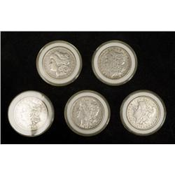 Collection of 5 Morgan Silver Dollars