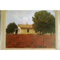 """""""House Among The Poppies"""" Borelli"""