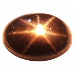 2.34ct Opaque Oval Cabochon Black Star Sapphire Natural  (GEM-23253)
