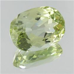 24.14ct Top Patroke Green Kunzite Appraised $10k (GEM-19117)