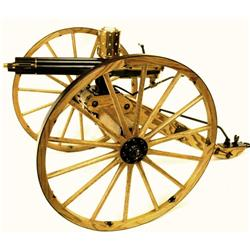 1878 Gatling Gun .22 Long Rifle SN 047-010