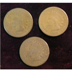 1185. 1865 AG, 66 AG & 67 G. Indian Head Cents.