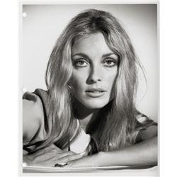 Sharon Tate production key book portraits from The Wrecking Crew
