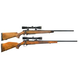 Two Scoped Bolt Action Rifles