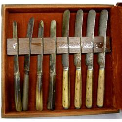 8 Vintage Bone Handled Knives in Wood Box