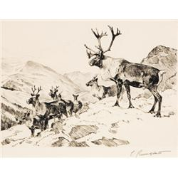 Rungius, Carl - Mountain Caribou (1869-1959)