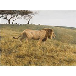 Bateman, Robert - Lion & Wildebeest (b. 1930)