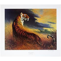 "Lot of 10 prints consisting of: A) International Wildlife Foundation 1981  original lithograph ""The"
