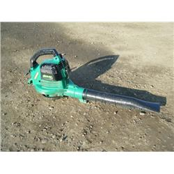 Weed Eater Blower