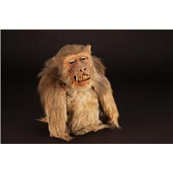 Close-up monkey puppet from The Hunger.