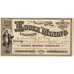 AZ - Pinal County,1879 - Essex Mining Company Stock Certificate*Territorial* - Fenske Collection
