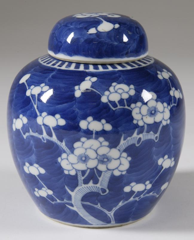 Image 1 Chinese Blue And White Porcelain Ginger Jar 19 C